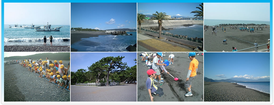 静岡海岸 トップ画像